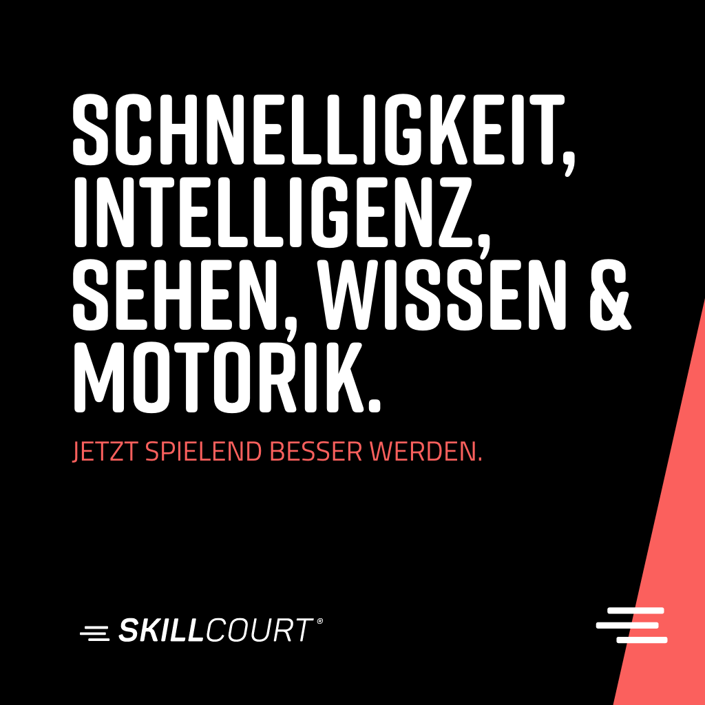 skillcourt P2