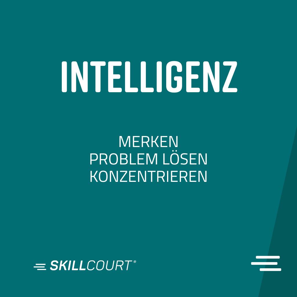 skillcourt P7