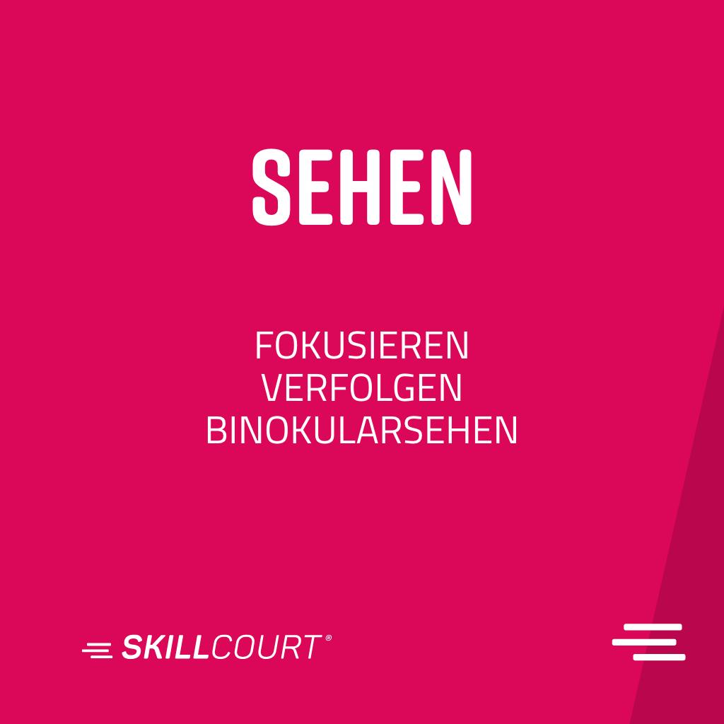 skillcourt P8